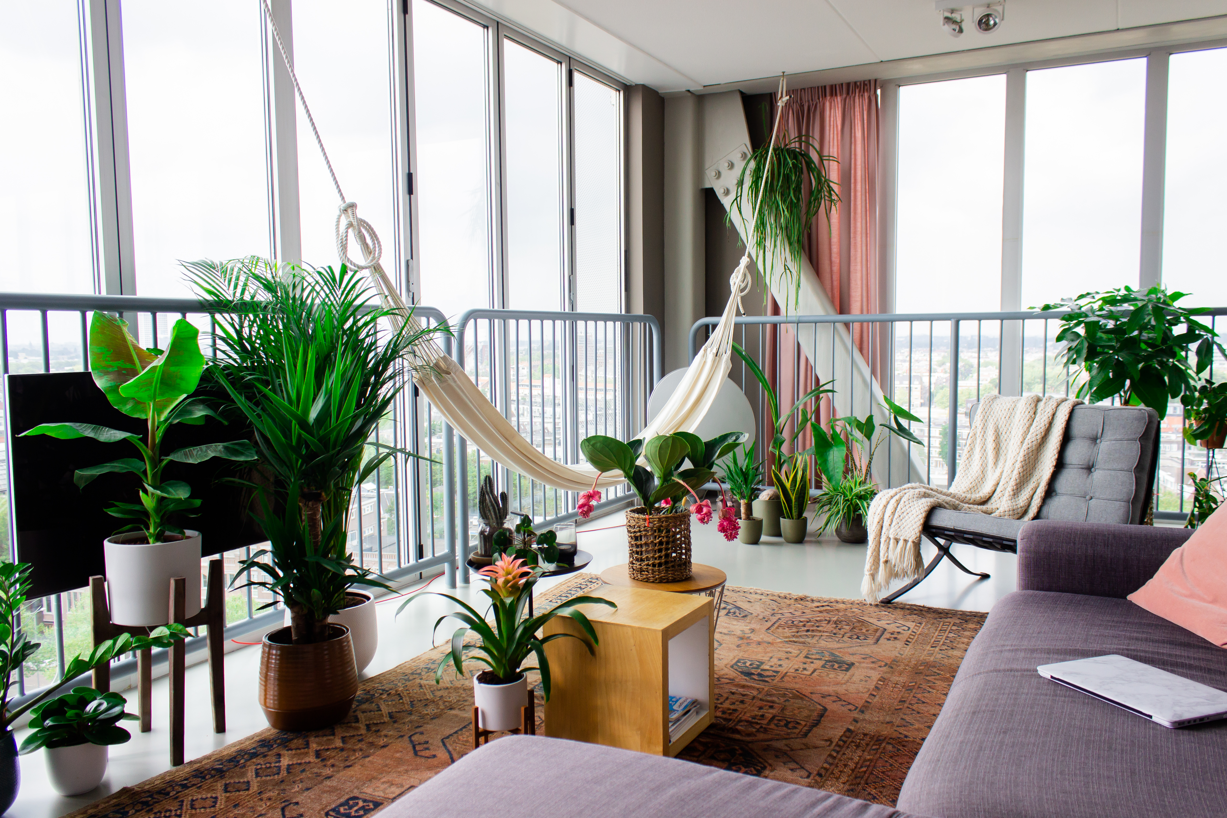 Urban Jungle planten | Stek Magazine
